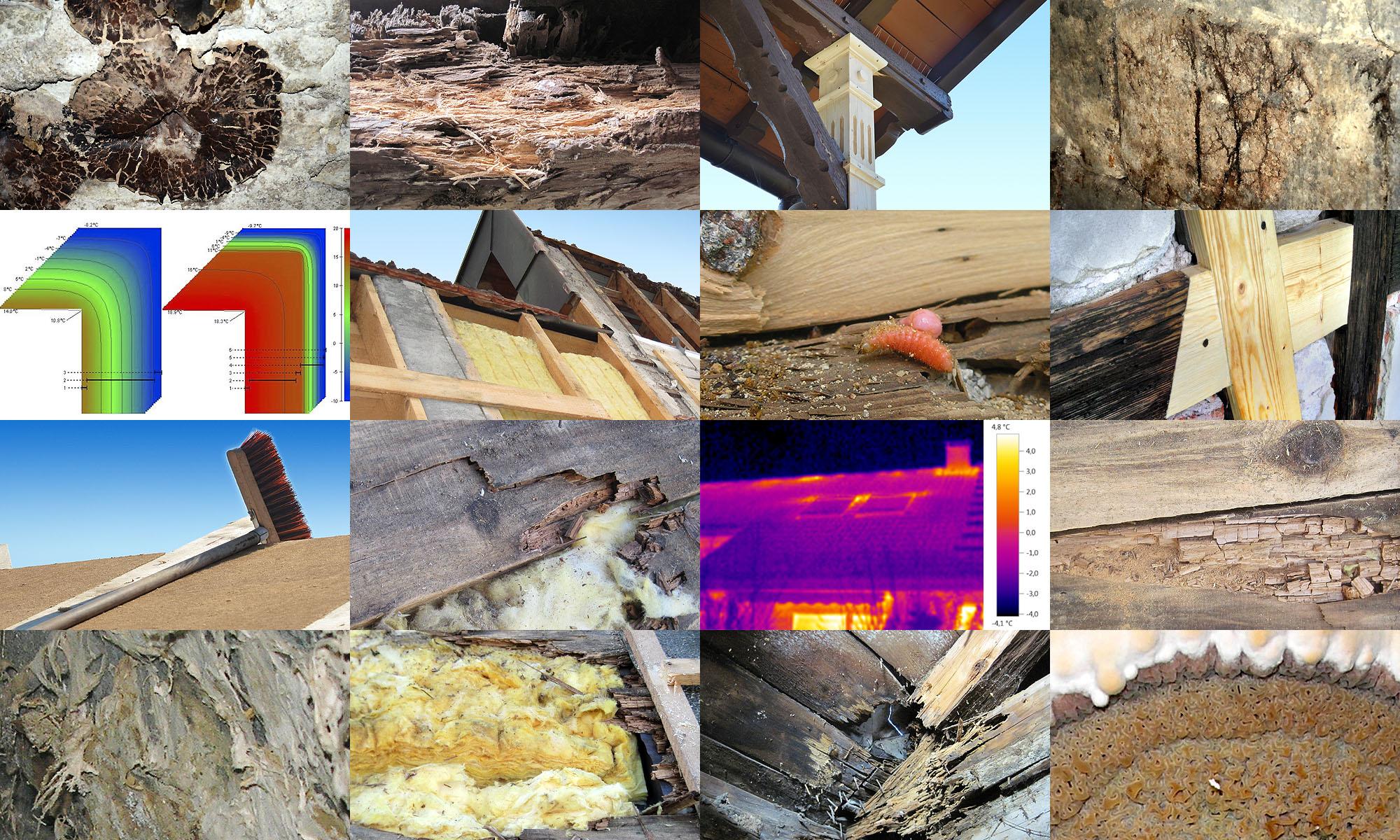 Bau-Sachverständiger im Bereich Zimmerei / Arbeitsbeispiele Schadensaufnahme für Gutachten